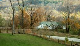 House in autum view