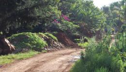 Nairobi road