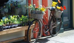 bike with flower against shop