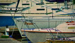 Boat prows in marina