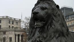 Lion, Trafalgar Square, London, England