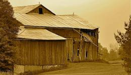 sepia: old barn
