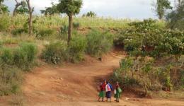 Road in rural Kenya