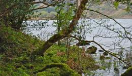 Lake at Gougane Barra, Co Cork, Irleland