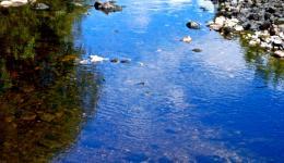 still water stream