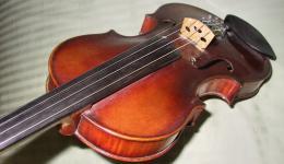 my red violin