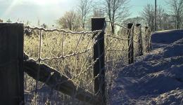 winter fence, Crieff, Ontario