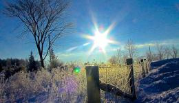 winter fence and white sun