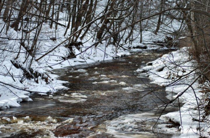 A Winter Stream in Burlington, Ontario